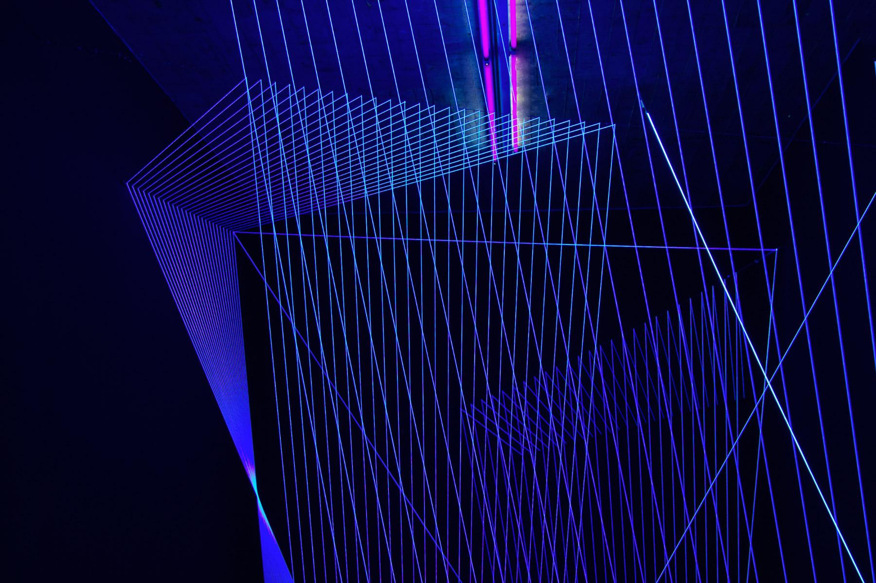 Lichtstrahlen Luminale (Foto: Danielle Switala)