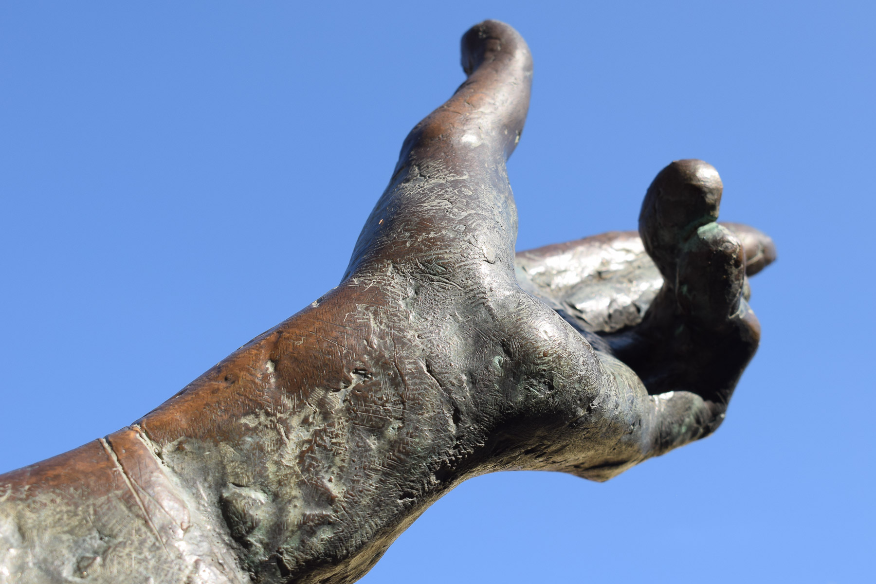 Hand (Foto: Peter Stollenmayer)