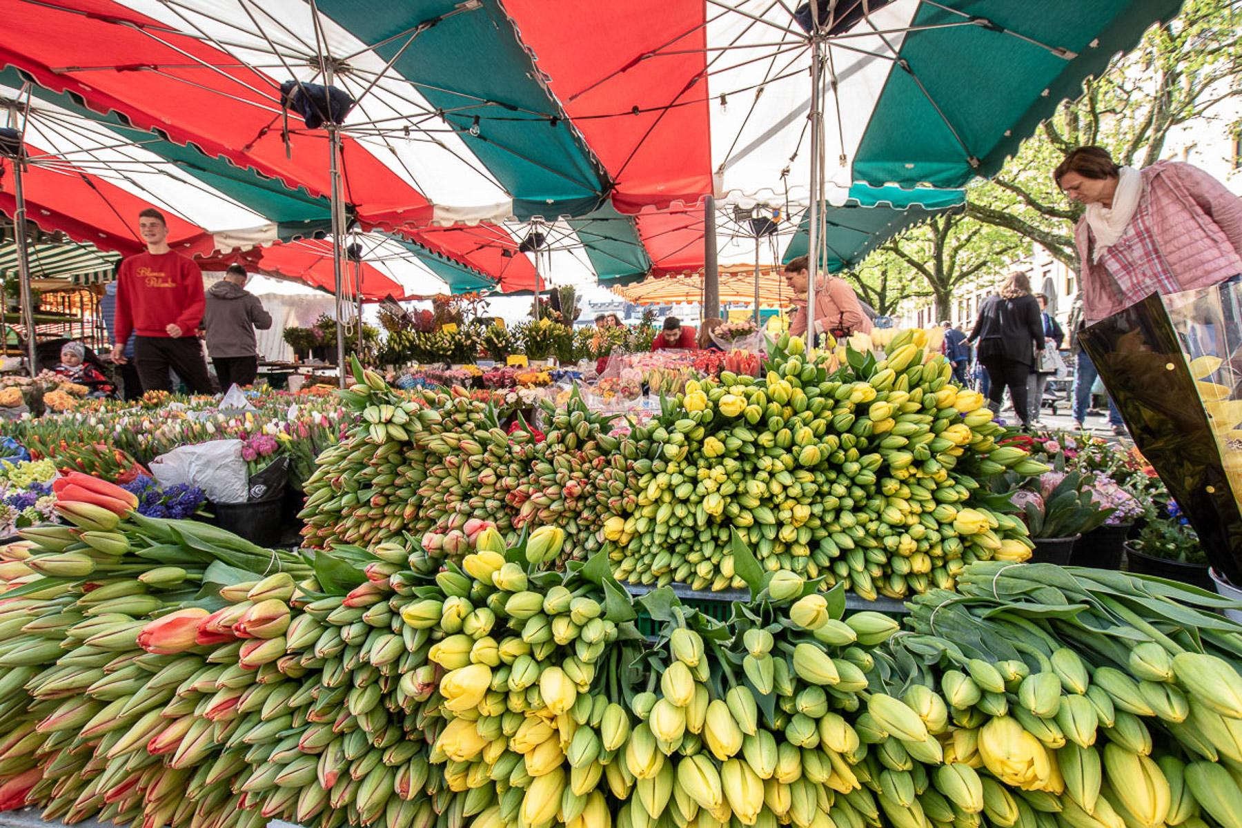 Marktstand (Foto: Reiner Gruhle)