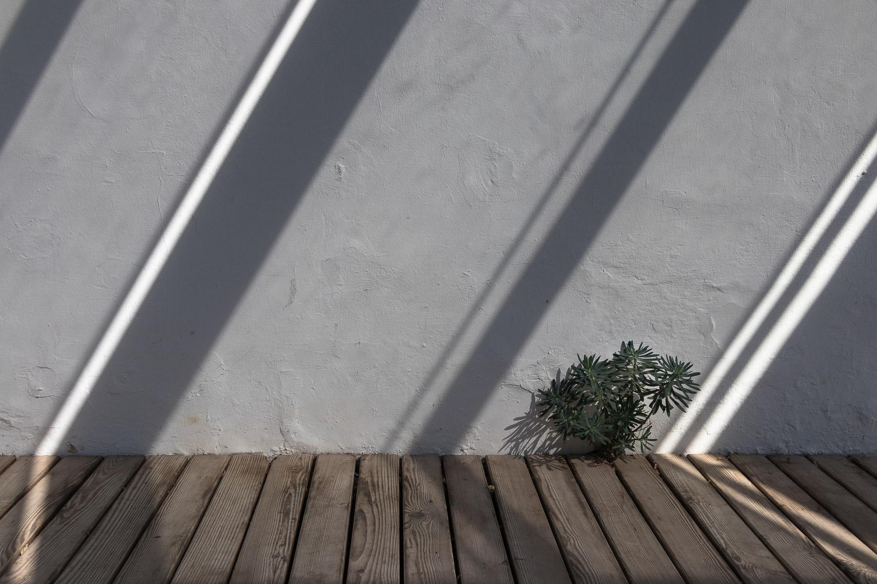 Lichtspiel (Foto: Jürgen Korb)