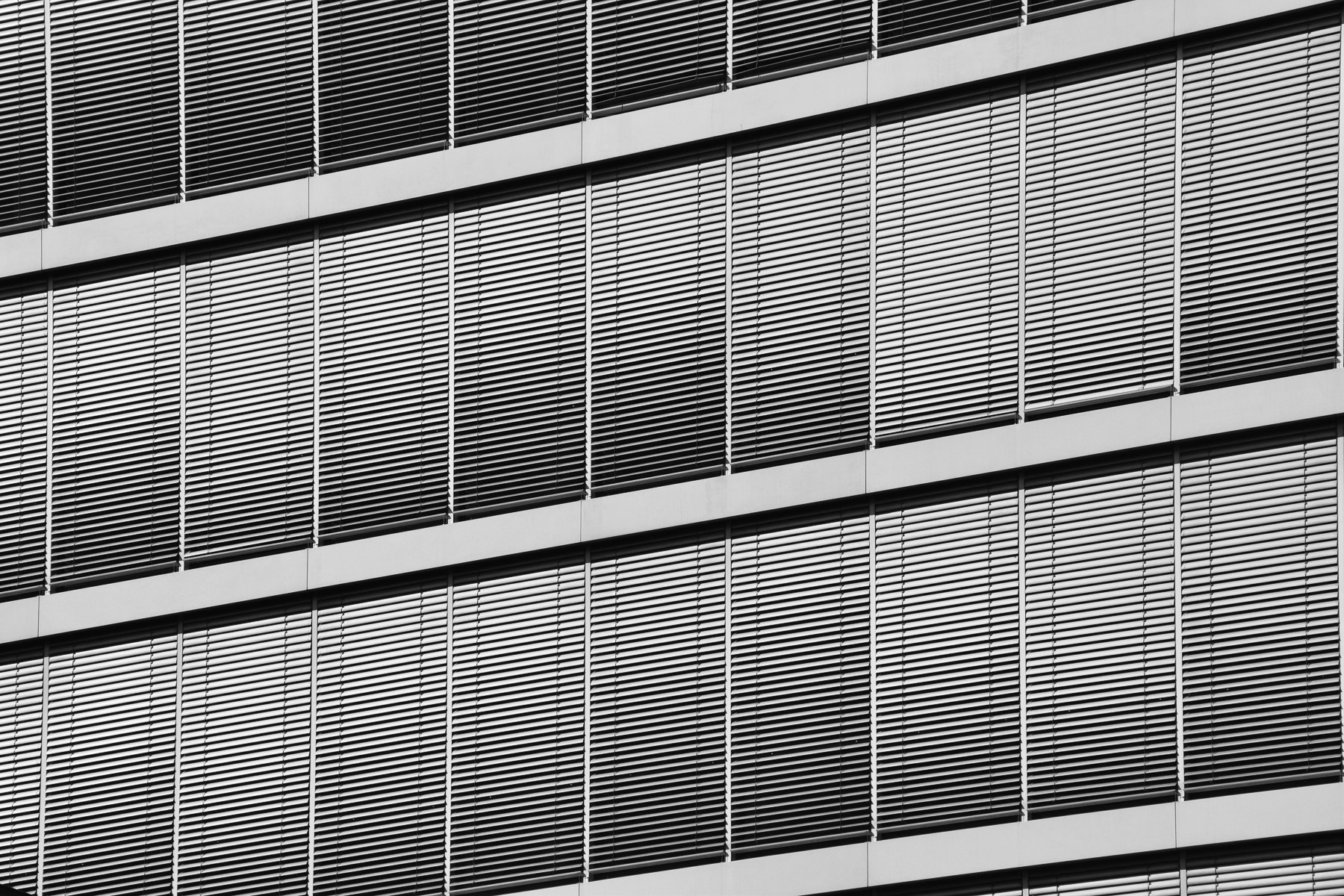 Fensterlinien (Foto: Peter Stollenmayer)