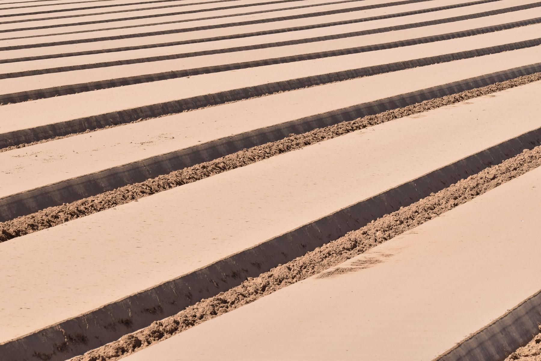 Ackerlinien (Foto: Peter Stollenmayer)