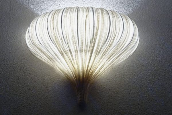 Leuchtender Knoblauch (Foto: Gabriela Scholl)