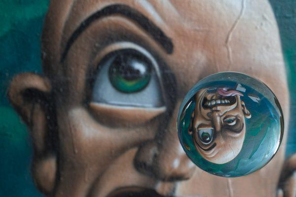 Kugelrund Auge (Foto: Peter Stollenmayer)