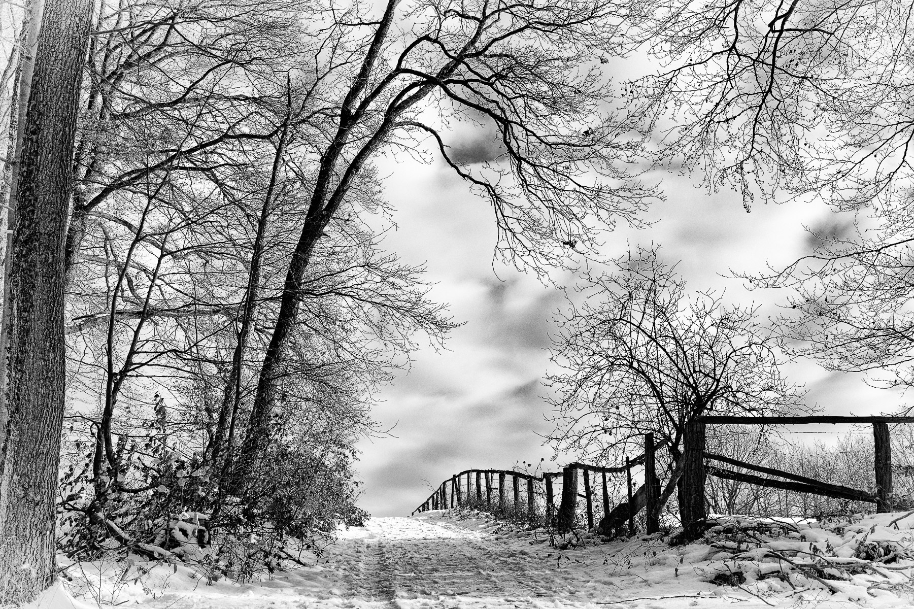 Winter (Foto: Danielle Switala)