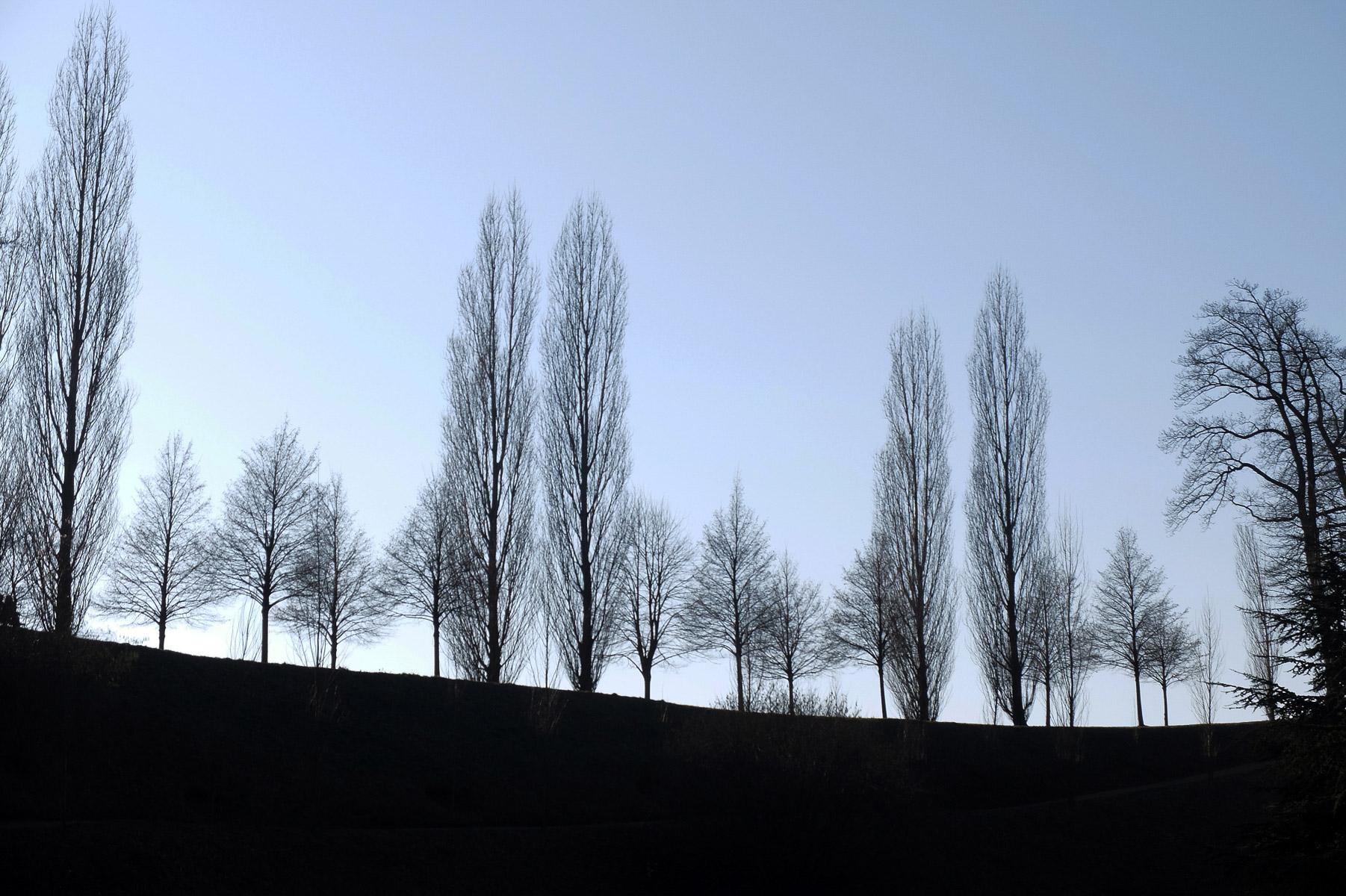 Warten auf den Frühling (Foto: Olaf Nagel)